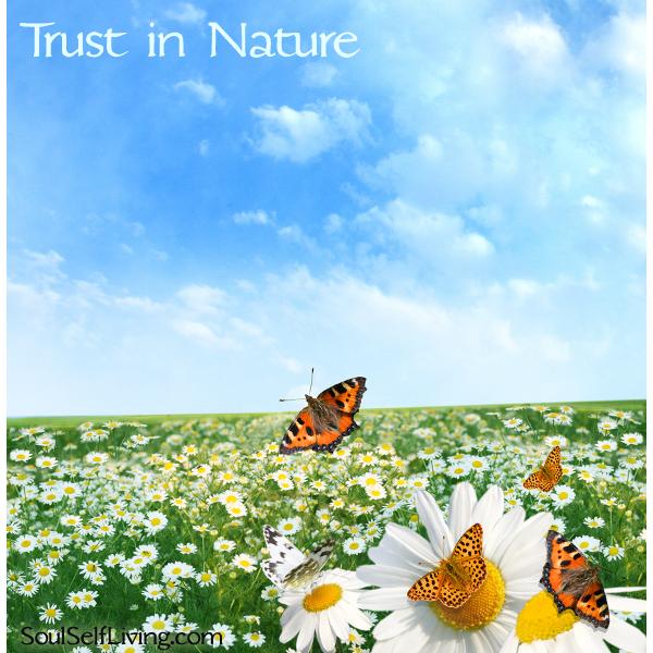 Trust in Nature
