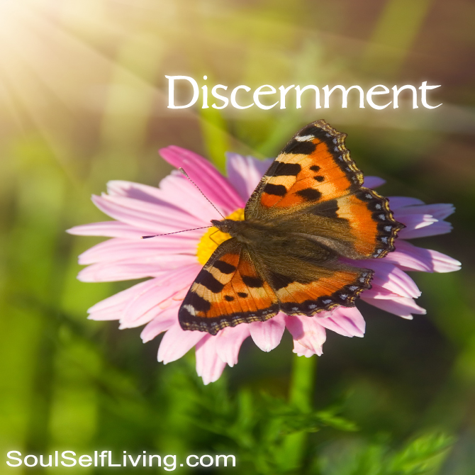 Personal Development – Discernment