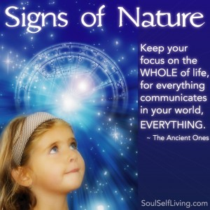Signs-of-Nature