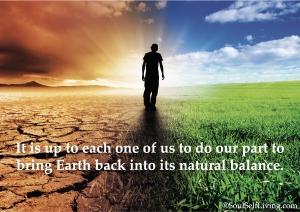 Regenerative Sustainability