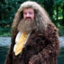 Caring & Weakness - Hagrid