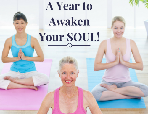 New Course – A Year to Awaken Your Soul
