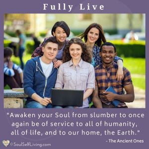 Fully Live