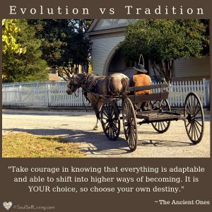 Evolution vs Tradition