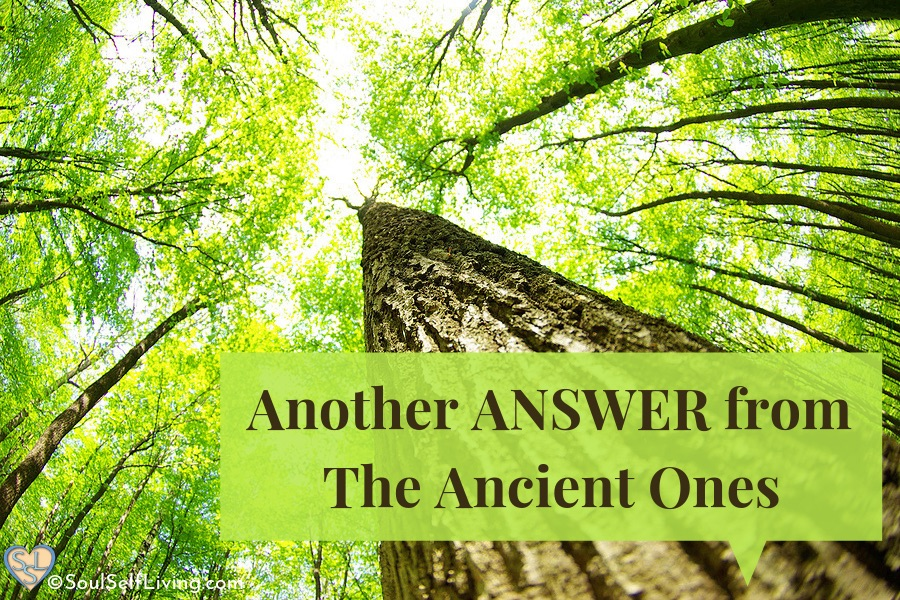 Another Answer from The Ancient Ones