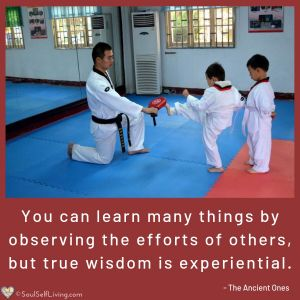Wisdom is Experiential