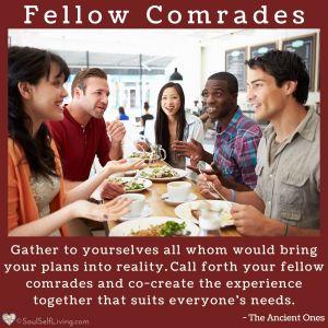 Fellow Comrades