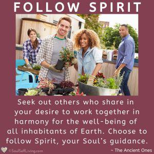 Follow Spirit