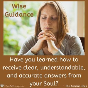 Wise Guidance