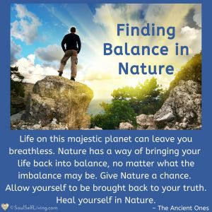 Finding Balance in Nature
