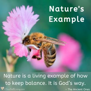 Nature's Example