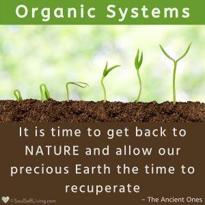 Organic Systems